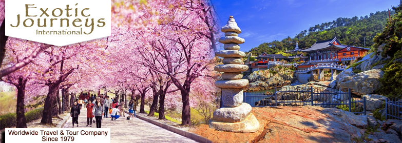 Seoul Tour Packages From India